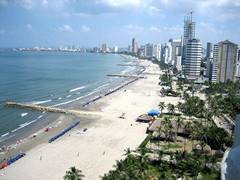 image of a beach at cartagena with high rise buildings in the distance. There are palm trees set back from the beach and not many people