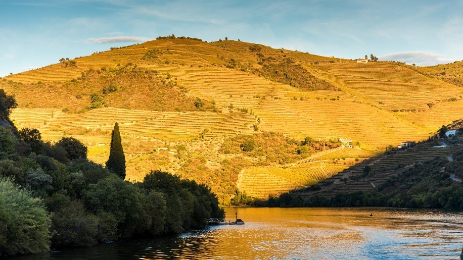 image of the river on the douro river with sunset and hill in the background
