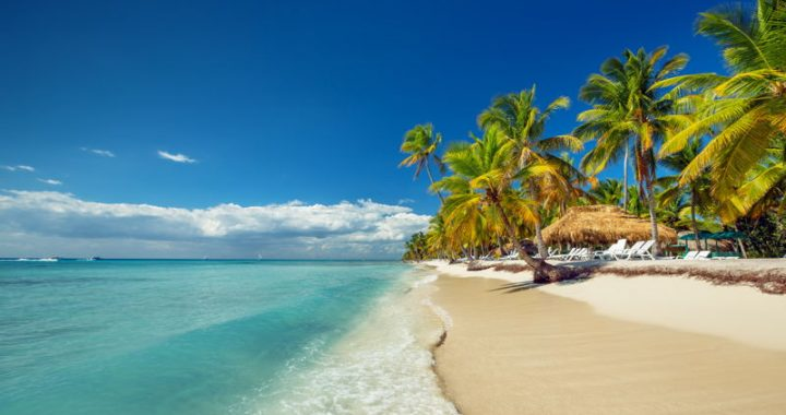 An idylic beach on the Dominican Republic with palm trees and clear blue seas