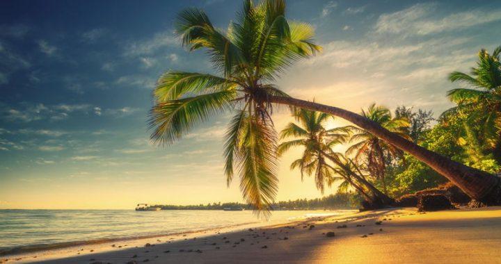 a tropical beach at sunset