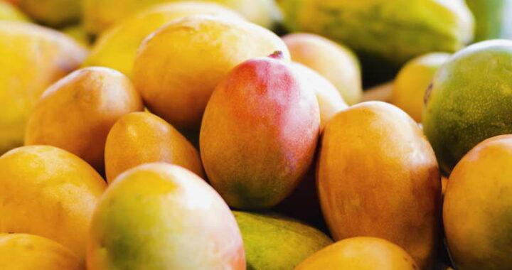 tray of mangos