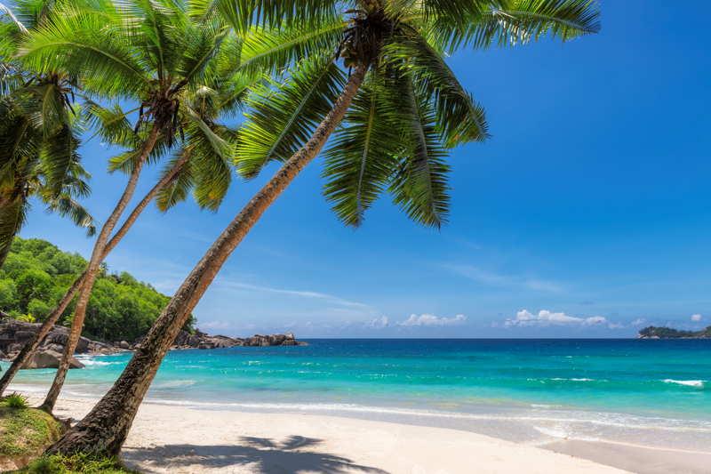 dream beach in the caribbean
