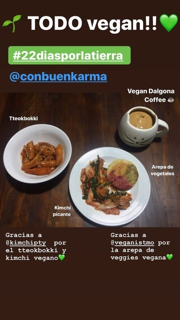 korean vegan food in panama
