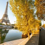 Landsacpe view of Eiffel tower during the sunrise with beautiful yellow trees in autumn in Paris