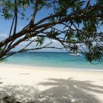 Tropical white sand beach on Contadora island