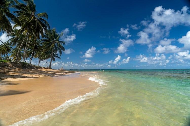 Palm fringed beach in Las Terrenas, Dominican Republic.