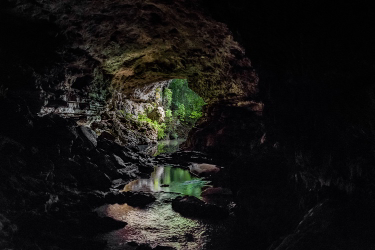 The Rio Frio Cave, Upstream Entrance, Cayo District, Belize